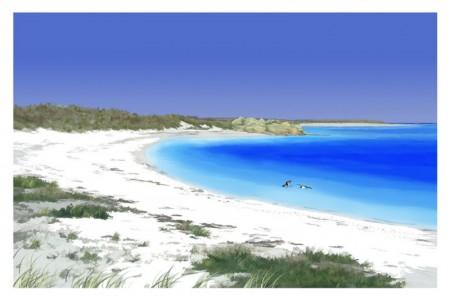 Tresco Beach